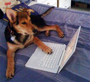 Pilot blogging.